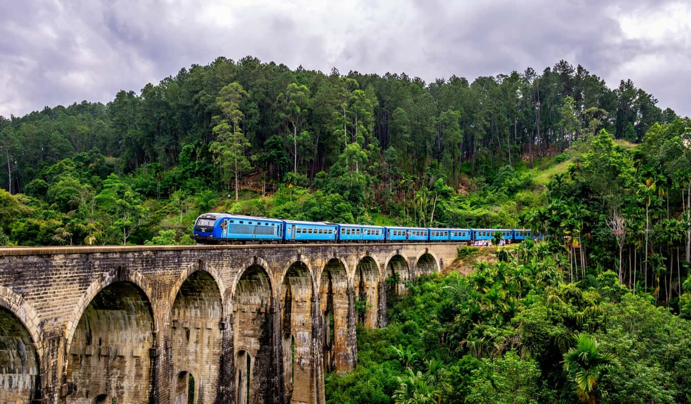 A train in Sri Lanka surrounded by lush jungle
