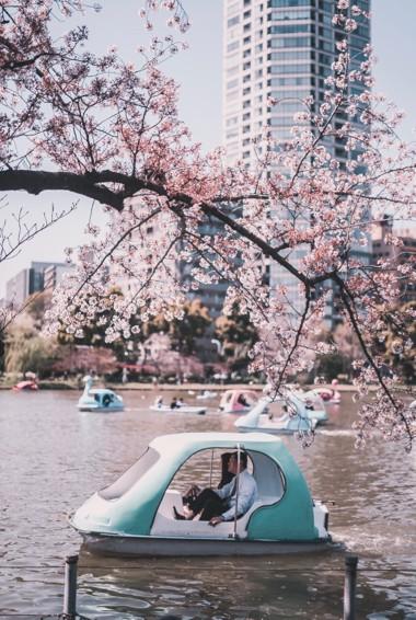 Locals enjoying the lake in Ueno Park in Tokyo, Japan