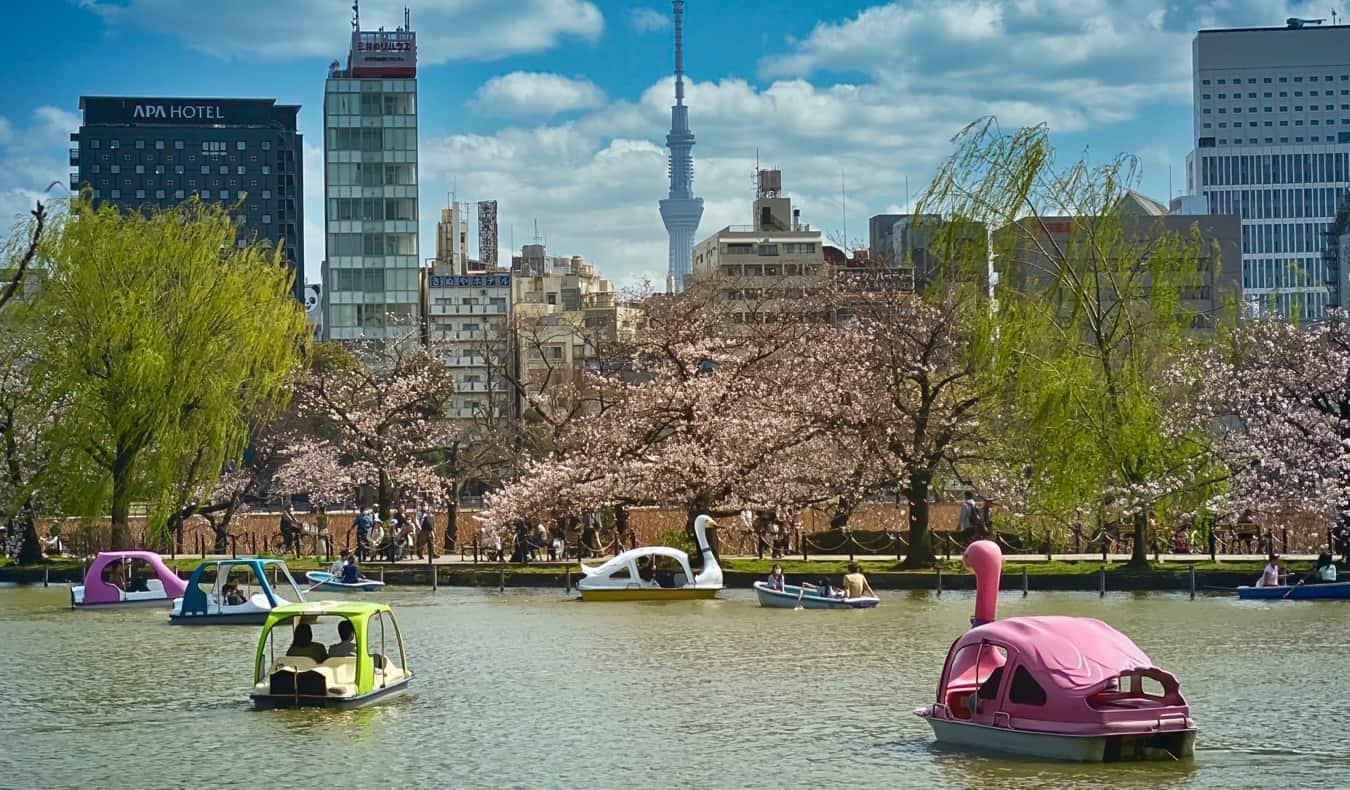 People on the lake having fun in Ueno Park in Tokyo, Japan