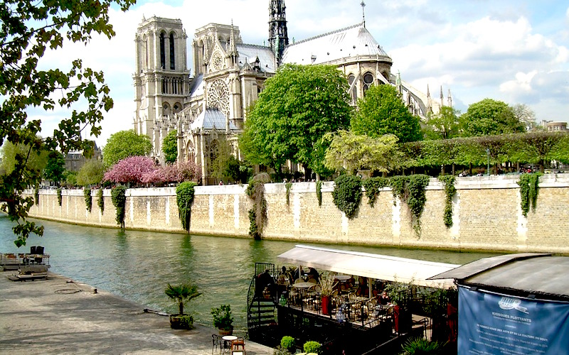 beautiful view of notre dame in paris
