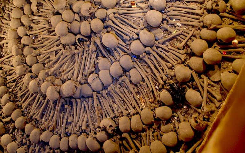 paris catacombs, photo by Thomas Quine (flickr: quinet)