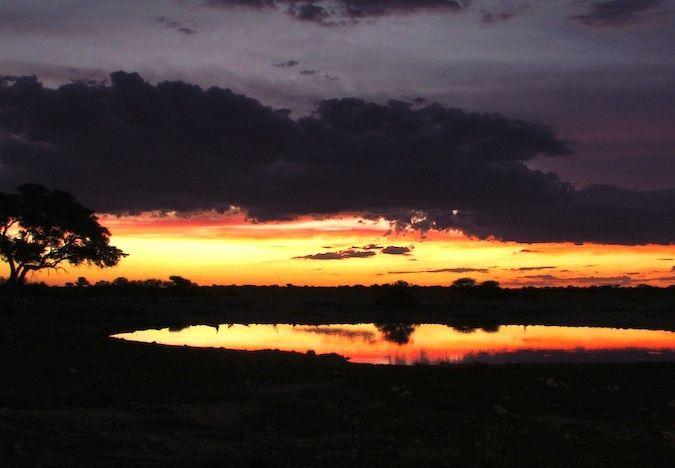 Stunning sunset in Etosha National Park, Namibia