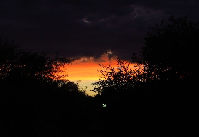 a red sunset in Africa