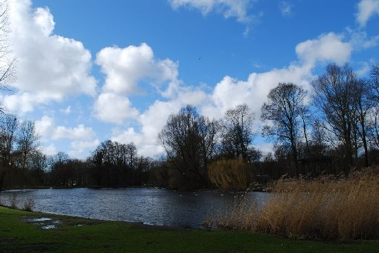 The water in Oost, Amsterdam with blue skies