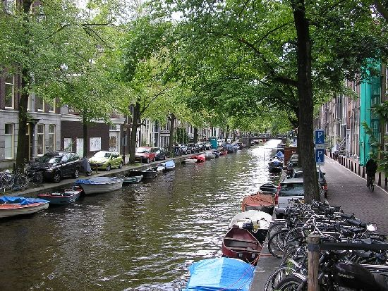 The Jordaan canal, covered with trees, going through the streets of Amsterdam