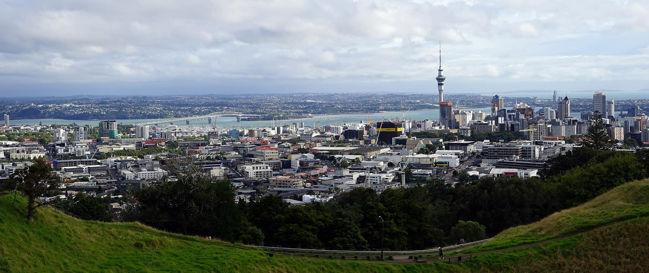Auckland city view with the tower