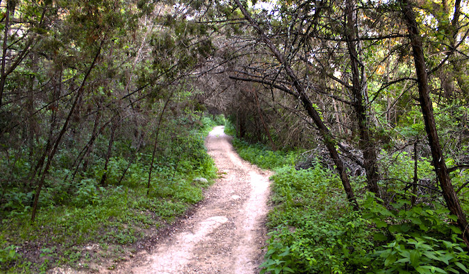 A trail on the Barton Creek Greenbelt in Austin, Texas during the summer