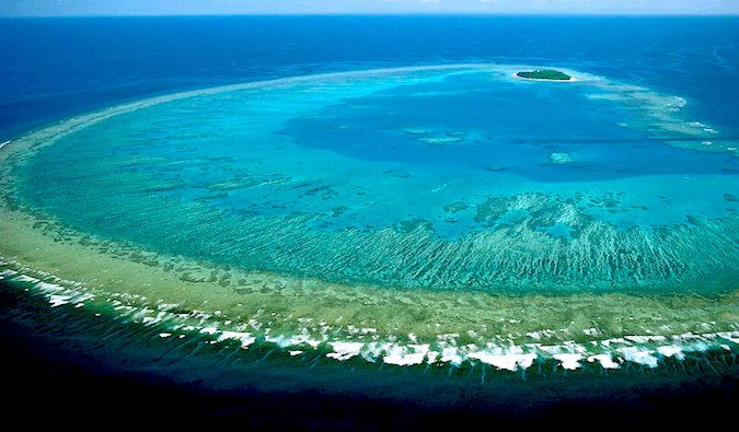 How to dive the great barrier reef tips costs suggest companies - Best place to dive the great barrier reef ...
