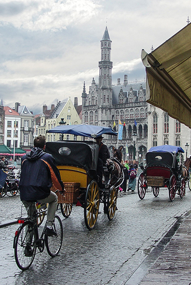 horse and carriages and a man on a bicycle in Bruges