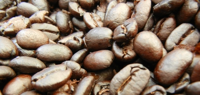 coffee beans in boquete, panama