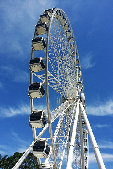 the giant ferris wheel in Brisbane