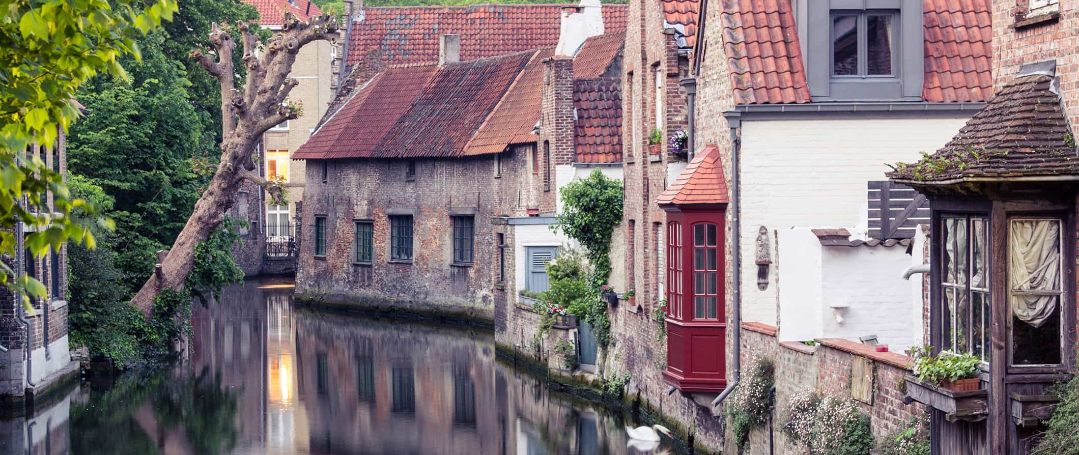 the canals in Bruges