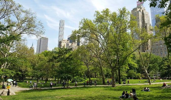 Inside Central Park