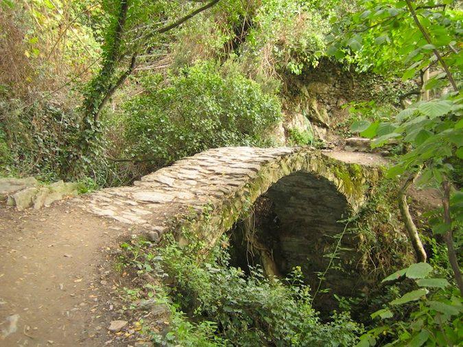 The trail in Monterosso