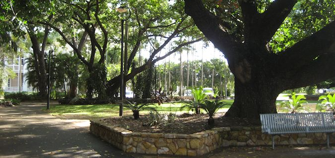 one of the many parks in Darwin, Australia