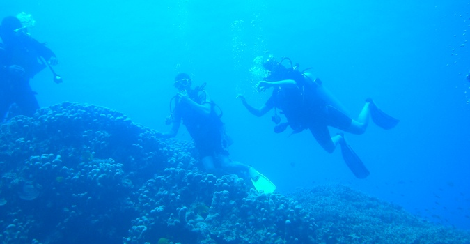 Two men scuba diving in the reefs of Fiji