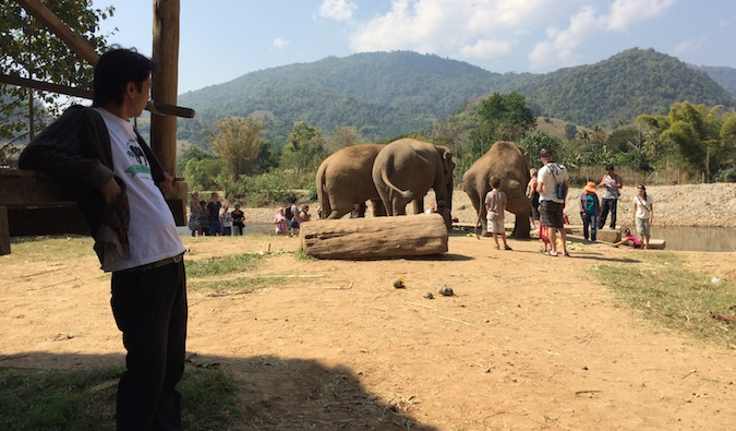 Travelers at Elephant Nature Park interacting with the elephants