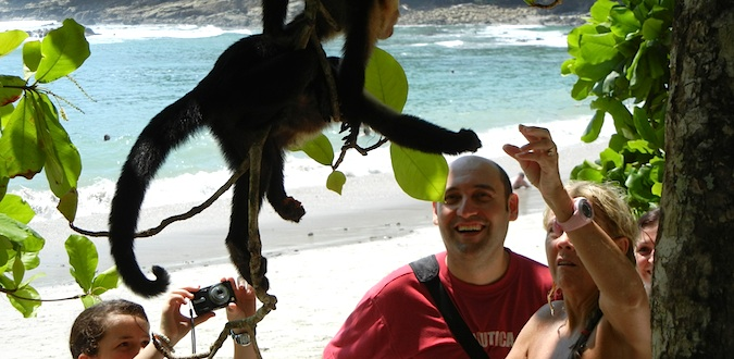 tourists in manuel antonio feeding monkeys