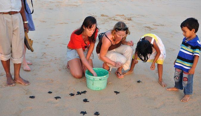 erin from goeringo volunteering in sri lanka helping turtles on a beach