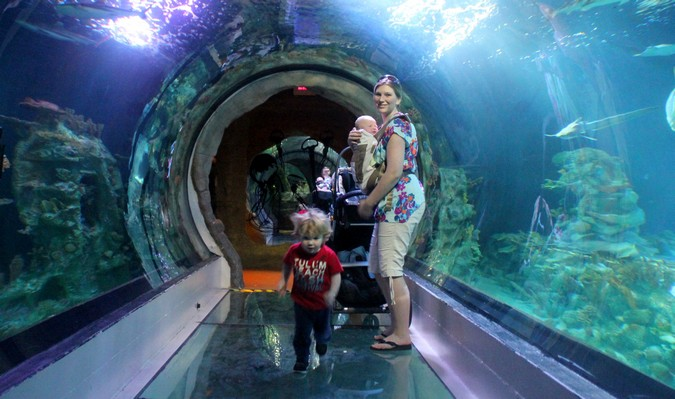 Mom and kids in an aquarium tunnel sightseeing abroad