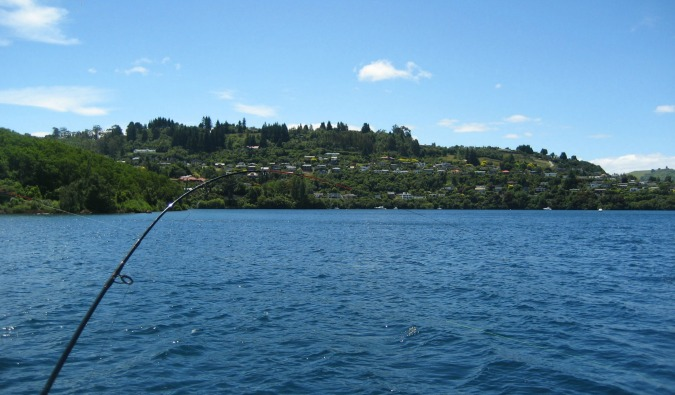 Fishing on a sunny day in Taupo, New Zealand