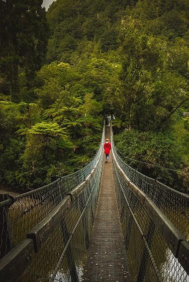 the historic swinging bridge in Franz Josef