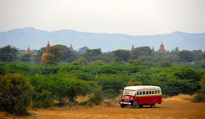 bus in thick foliage behind temples
