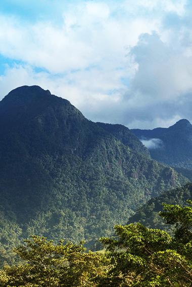 Pico Bonito National Park in Honduras