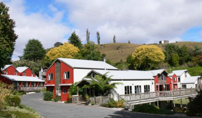 Kiwi Paka Hostel