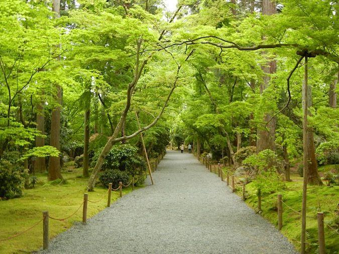 Ryoan - ji Temple walkway in Kyoto Japan