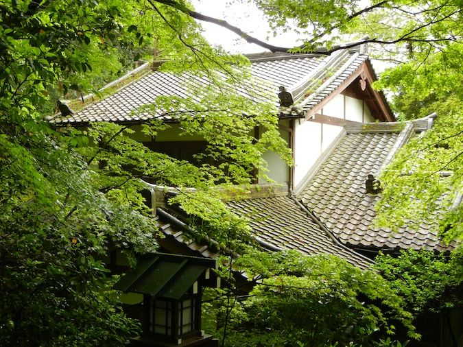 Chorakuji temple in Kyoto, Japan obscured by lush green trees