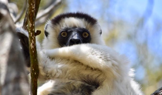 Beautiful scenery in Madagascar