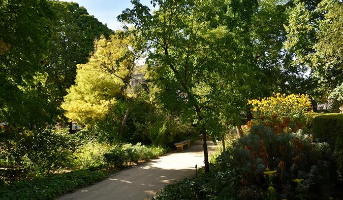 madrid's beautiful botanical gardens (flickr: @prof_richard)
