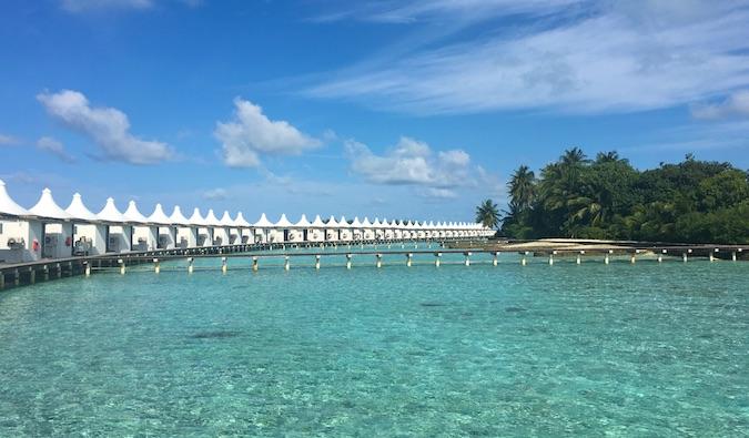 [Image: maldivesnew6.jpg]