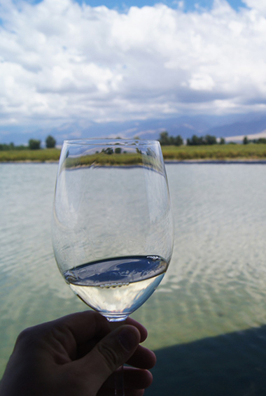 a wine glass being held up in front of the camera in wine country, Mendoza