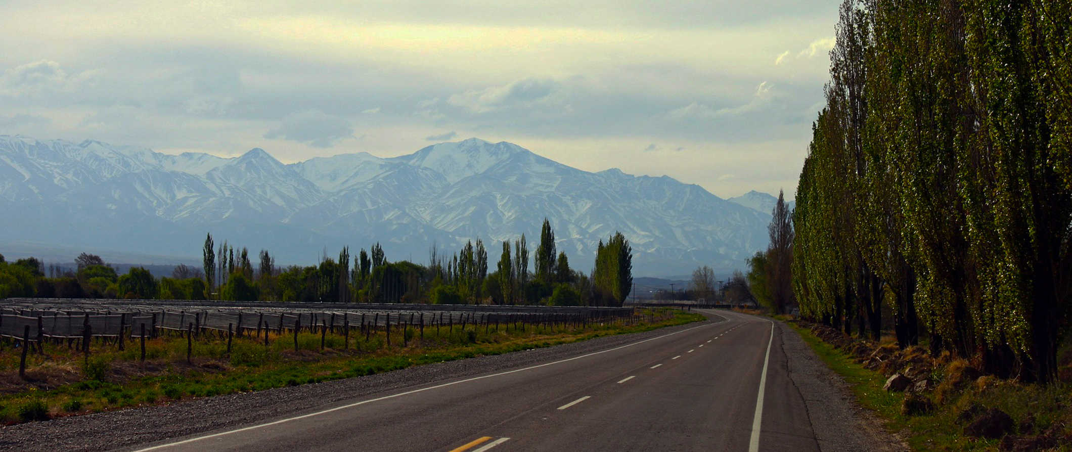 A winding road leading into Mendoza in Argentina
