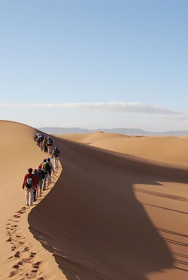 people trekking across a sand dune in the Sahara Desert; photo by Mike Fleming (flickr: @flem007_uk)