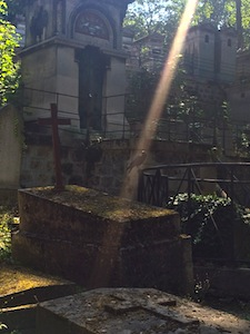 eerie photo of the light streaming on a crow at a cemetery