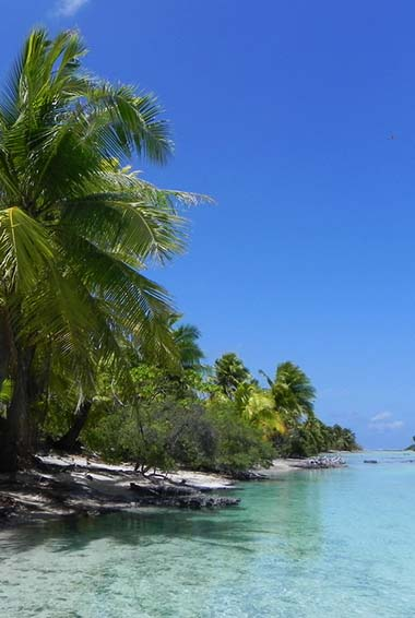 The beautiful shoreline and waters of French Polynesia