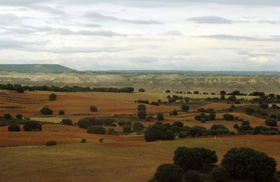 The vast Spanish Countryside with small shrubbery