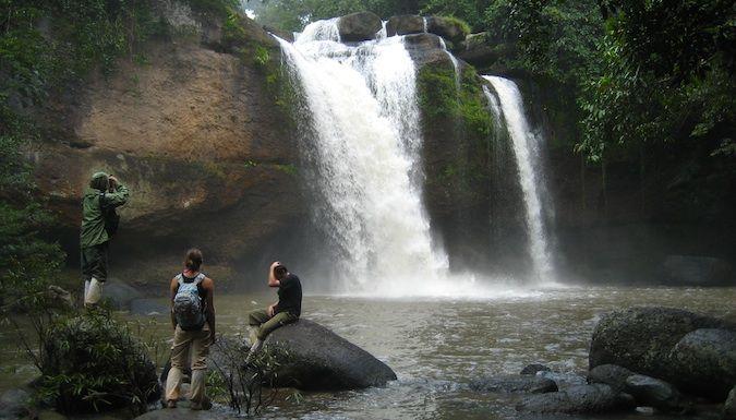 jungles in Thailand Khao Yai