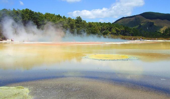 Rotorua geothermal reserve