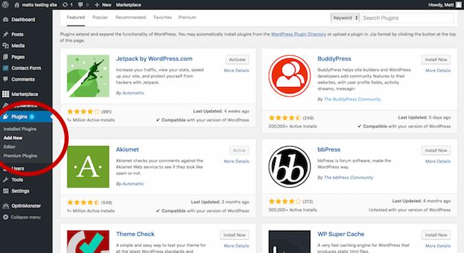 HostGator Blank Billing Info Page
