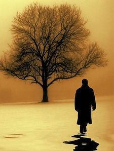 A stranger walking near a tree with an orange background