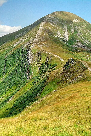 A hiking trail in the Carpathian Mountains in the summer in Ukraine